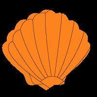 création de site internet studio crabe numérique